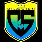 Carlos Stein
